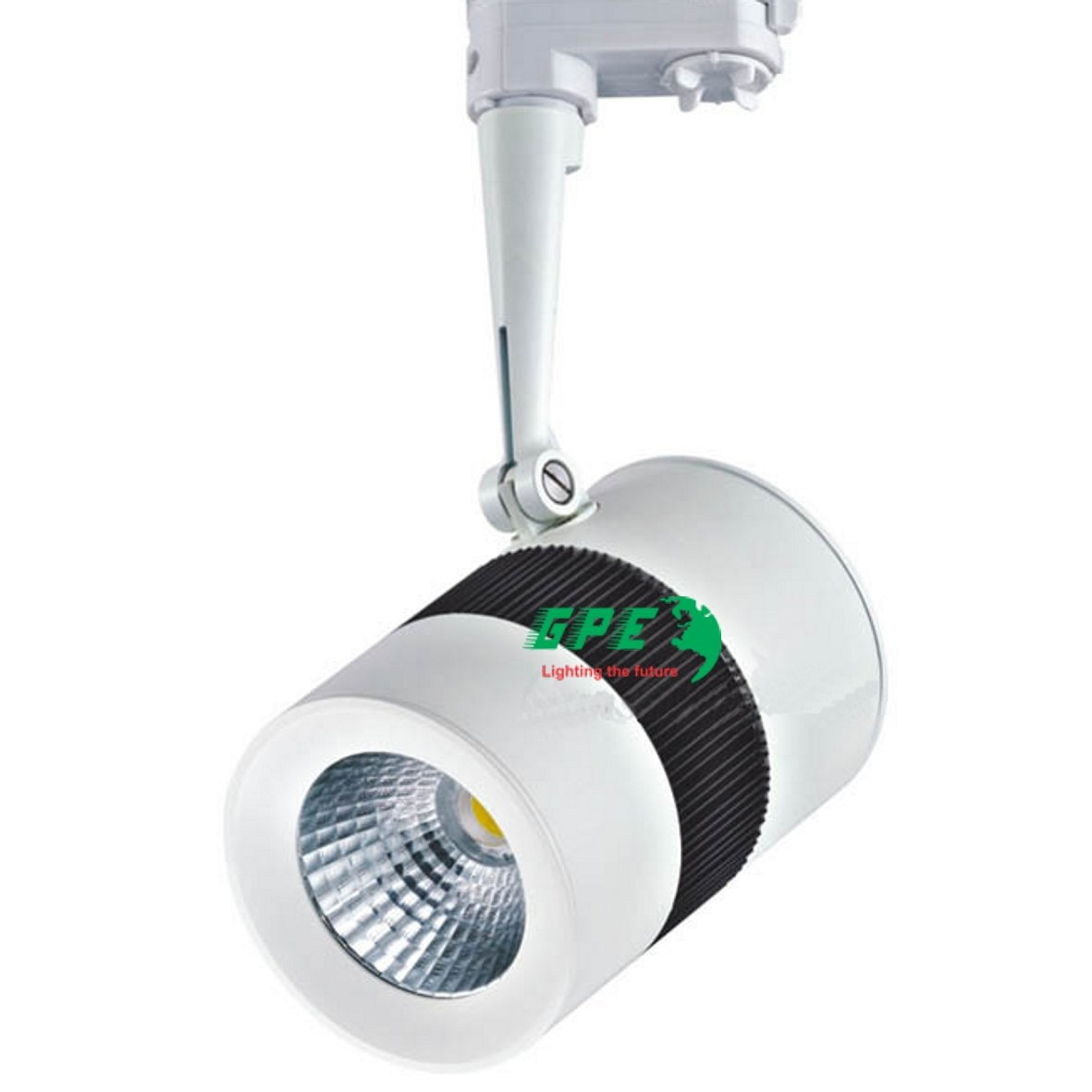 den_led_ray_gpe-sl25w-v5